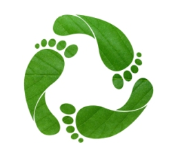 green-footprint-shutterstock11